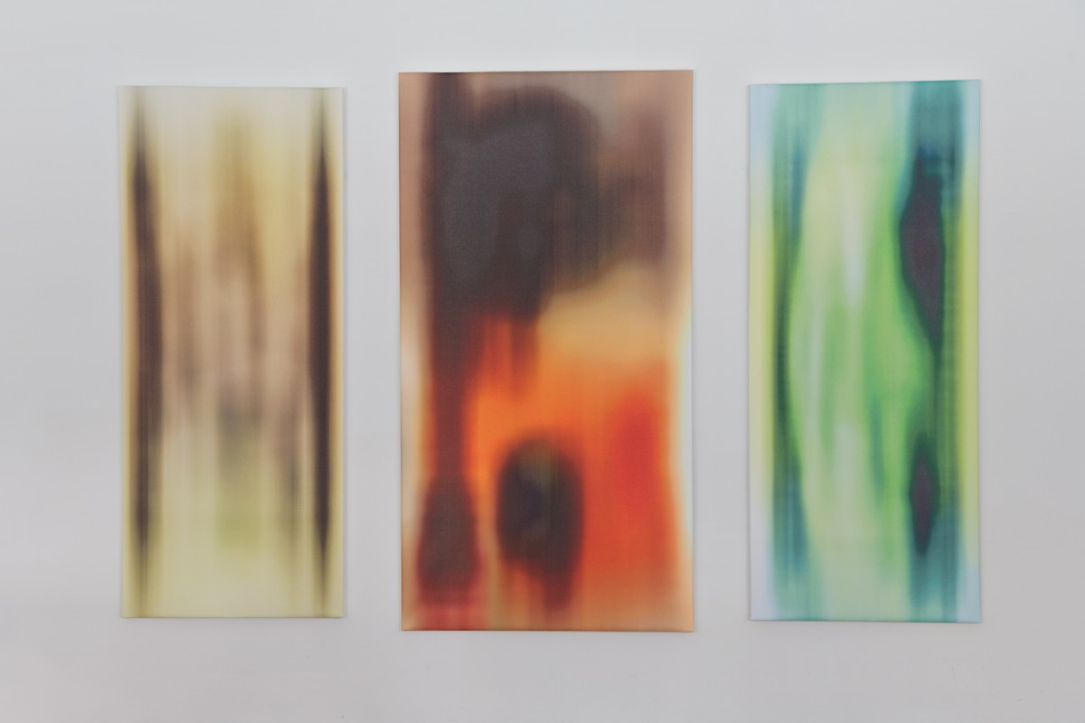 Stretched prints on canvas: Archival pigment prints, canvas, stretcher bars. Central 72 x 38 inches, Left: 72 x 30 inches, Right: 72 x 30 inches, 2013